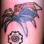 spider tattoo, suku suku tatau